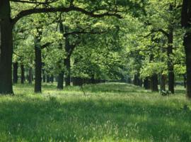 Label bas carbone : les premières méthodes de réduction des émissions publiées